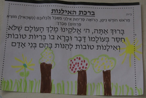 birkat hailanot activity for Rosh Chodesh Nissan