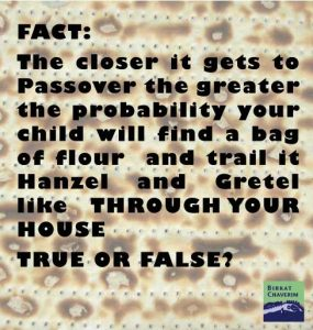 FACT: The closer it gets to Passover the greater the probability your child will find a bag of flour and trail it Hanzel and Gretel like THROUGH YOUR HOUSE TRUE OR FALSE? via birkat chaverim