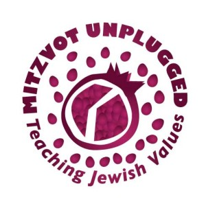 Mitzvot Unplugged Series Welcome from Birkat Chaverim