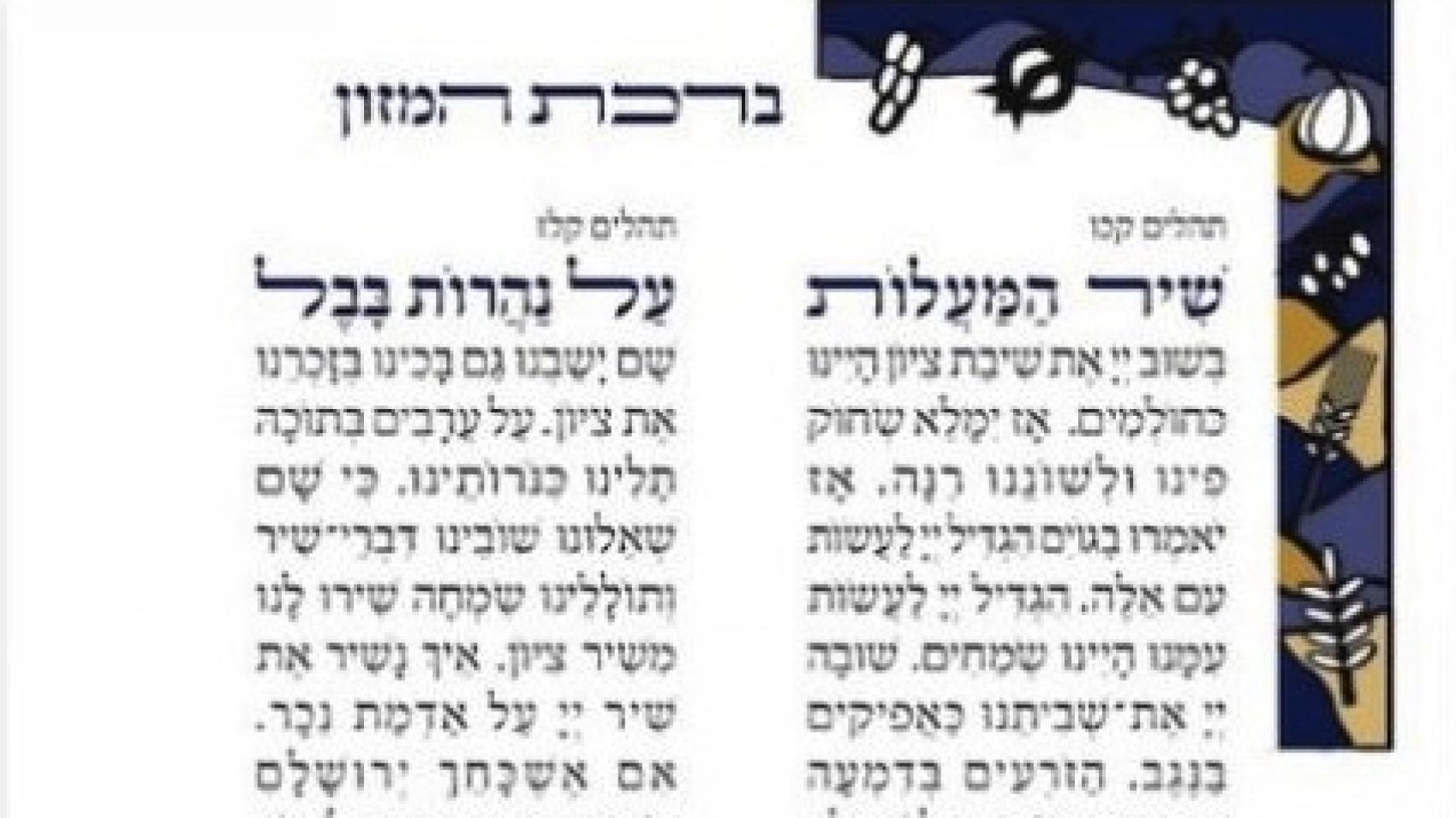 Seven species border Bnei Akiva Bencher