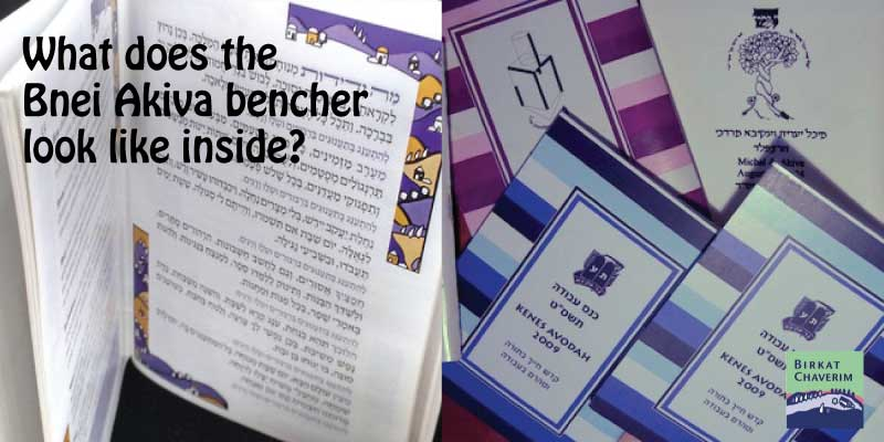 illustration for what does the bnei akiva bencher look like inside