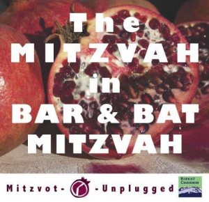 The Mitzvah in Bar and Bat Mitzvah a Guest post by Marcia Goldlist for Mitzvot Unplugged.