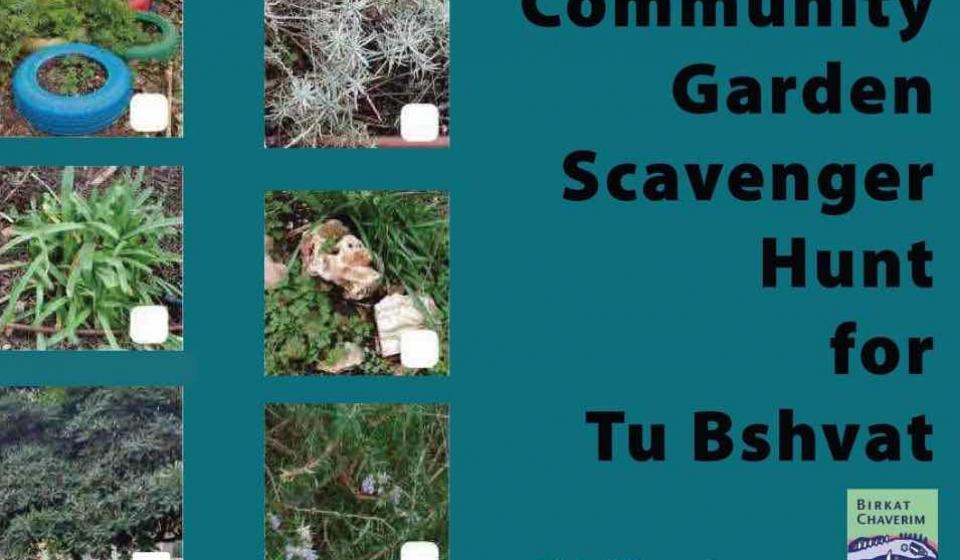 Featured image Community garden scavenger hunt for tu bshvat